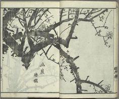 Okada, Baikan: woodcut, from Baika jô, The plum blossom album Japanese Flowers, Japanese Art, Artist Journal, Ink Painting, New Art, Amazing Art, Art Photography, Plum, Drawings