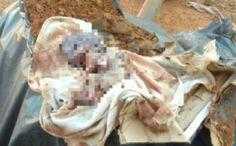 Mãe e pai são presos após fazer aborto e enterrar corpo do feto no quintal de casa