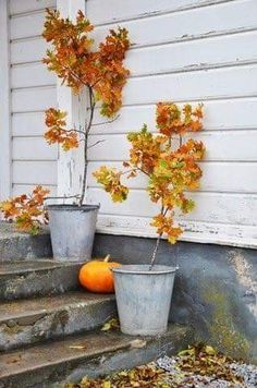 Front porch outdoor autumn decor, autumn in the garden Thanksgiving and fall
