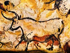 caves of lascaux - Most famous section is of 4 bulls or aurochs (extinct wild ox) One of bulls is 17' or 5.2 meters long