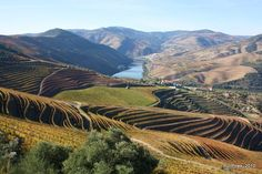 A Douro Valley day trip is an absolute must for wine lovers looking for world-class views too. Here's how to have the best day trip to the Douro! Douro Portugal, Visit Portugal, Portugal Trip, Portugal Travel, Agra, Best Places To Travel, Places To Visit, Day Trips From Porto, Rio