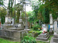 Lviv - Lychakivsky Cemetery
