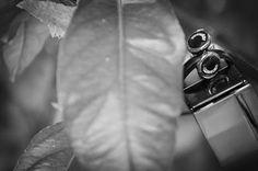 wedding cufflinks Wedding Props, Wedding Rings, Wedding Cufflinks, Engagement Rings, Jewelry, Enagement Rings, Jewlery, Jewerly, Schmuck