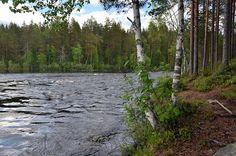 Ruunaa, Lieksa, Pohjois-Karjala, 2015