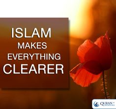 #islam Allah, All About Islam, Praise And Worship, Holy Quran, Way Of Life, Deen, Islamic Quotes, Helping Others, Compassion