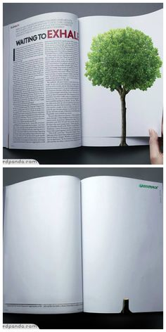 Global warming and deforestation essay