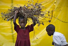 A Congolese girl displaced by fighting carries firewood at a camp near Goma in eastern Congo, February 9, 2009. (REUTERS/Finbarr O'Reilly) #
