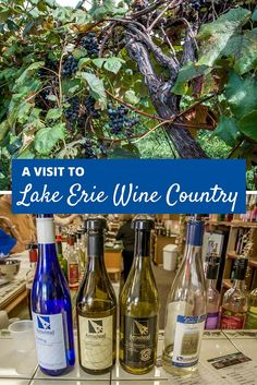 lake erie amp chautauqua lake wine trail wedding ideas