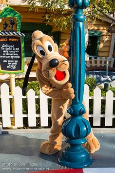 Pluto - Magic Kingdom. He was one of my favorite animal characters we met. He's also in one of my favorite all time pictures of our family in front of the castle.