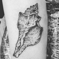 #Repost @classicmarkingstudio She'll from today #shell#tattoo#tattoos #classicmarkings #newbury #blackworktattoo #blackworkersdots #dotwork #dotworktattoos #linestattoo #dotworklinetattoo#blackandgreytattoo #beach #inkformer #ocean