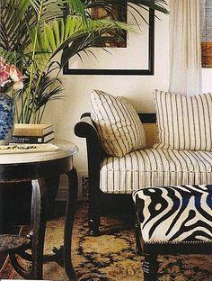 stripes, zebra + traditional rug. british colonial.