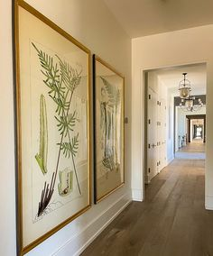 Challenged by a small space? Don't be afraid to introduce large prints to turn an ordinary space into a statement space. Shown here: Custom print and frame project for a designer with a long hallway, Nine 6'tall antique fern prints transformed an oft-neglected hallway into a statement.