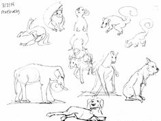 [Alpacas at Ohio State Fairgrounds Class Session] Cafe Sketch Gestures!