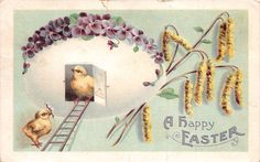 Lot of 4 Early Vintage Easter Chicks Early 1900s Postcards 44041 | eBay