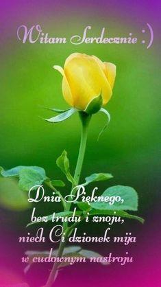 Good Morning, Plants, Good Morning Funny, Buen Dia, Bonjour, Plant, Good Morning Wishes, Planets