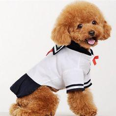 Summer Dog Costume Skirts School Uniforms Pet Costume for Dog $11.59