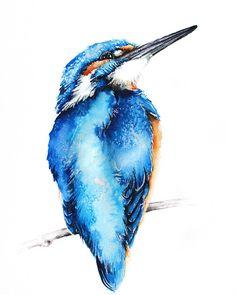 Kingfisher watercolour painting #kingfisher #birds #animals #animalart #birdart #birdartist #nature #wildlifeart #wildlifeartist #watercolour #feathers #art #karolinakijak