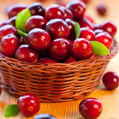 Health Benefits of Cranberries - They have been used medicinally for wounds, because of the anti bacterial properties. Native Americans used cranberries to help reduce aches and pains.