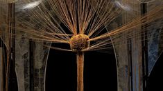 Aesthetica Magazine - Interview with Installation Artist, Elpida Hadzi-Vasileva, Djanogly Gallery Artistic Installation, Organic Matter, New Shows, Dandelion, Sculpture, Gallery, Beauty, Roof Rack, Dandelions