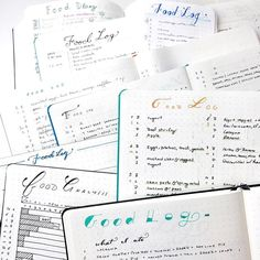 Day 004 of my #100DaysOfBulletJournalIdeas project! Hm any guesses as to what today's idea might be?   Latest article up now! Link in bioooo.  #BulletJournal #BulletJournalIdea #BulletJournalCollection #BulletJournalFoodLog #foodlog