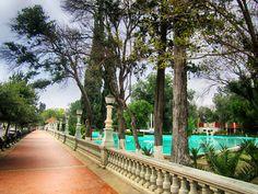 Alameda Zaragoza - Saltillo, Coah.
