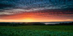 "Fine Art Photography - Traverse City Michigan Vineyards Sunset - 9"" x 18"" metallic photograph"
