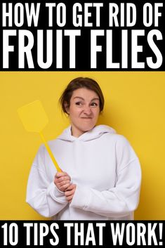 How to Get Rid of Fruit Flies: 10 Tips That Actually Work Fruit Flies, Household Tips, Cleaning Hacks, Make It Yourself, Home Hacks, Diy Household Tips
