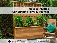 Privacy fence,planter box.