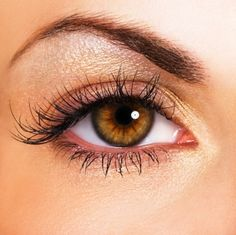 Permanent Eye Makeup – Yes Or No - http://www.weddideas.com/hairstyle-ideas/permanent-eye-makeup-yes-or-no.html
