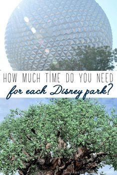 How Much Time Do You Need at Each Disney Park? How much time do you need at each Disney park? It's different for everyone, but this guide will help you roughly figure out how many days you should budget for each of the four Disney parks! Disney On A Budget, Disney World Vacation Planning, Disney Day, Disney World Parks, Walt Disney World Vacations, Disney Worlds, Disney 2017, Trip Planning, Disney Secrets