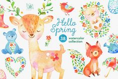Hello Spring. Watercolor collection by StarJam on @creativemarket
