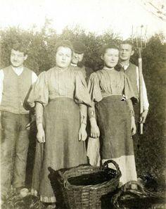 Aardappelrooiers uit 1900 (Auteur: P. Raijmakers) De aardappelziekte van 1850 Eindhoven.