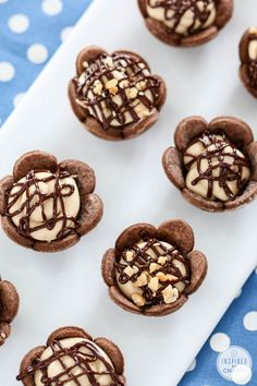 Bite-Sized Peanut Butter Pies with Chocolate Crust