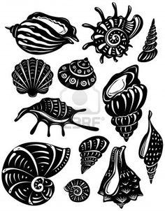 Google Image Result for http://us.123rf.com/400wm/400/400/wikki/wikki1107/wikki110700001/9929770-set-of-decorative-shell.jpg