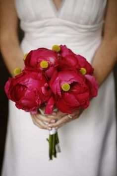 Lovely Shade Of Peonies.