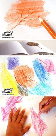 Falevél nyomat színes ceruzával - Leaf RUBBINGS