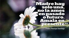 Dia de la Madre, Frases, Poemas. Frases para compartir a las madres. Ver videos en: https://www.youtube.com/user/frasesdiadelamadre