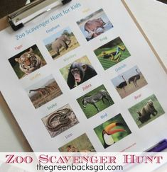 What a fun idea for your next trip to the zoo: a scavenger hunt! Zoo Scavenger Hunts, Scavenger Hunt For Kids, Educational Activities, Family Activities, Learning Activities, Play Based Learning, Fun Learning, Business For Kids, Zoo Animals