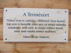 Fekete István idézet a természetről. A kép forrása: Sokszínű Vidék