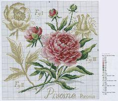 DFEA etude botanique cross stitch pattern