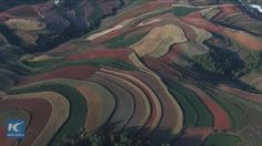 Dongchuan District in Kunming, capital of southwest China's Yunnan Province is famous for its stunning scenery of red earth terraces. Located mainly at altitude between 1,800 and 2,600 meters, the terrace's brownish-red color comes from its rich deposit of iron and aluminum.
