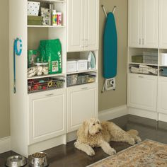 pet supply organization ideas Create a pet station in your laundry room to keep supplies organized. Animal Room, Mudroom Laundry Room, Laundry Room Design, Stuffed Animal Storage, Diy Stuffed Animals, Pet Station, Pet Organization, Organizing Solutions, Storage Solutions
