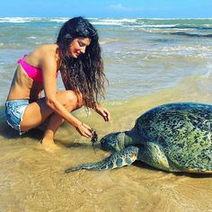 Who wants to feed turtles @ Hikkaduwa beach - Sri Lanka #VisitSriLanka