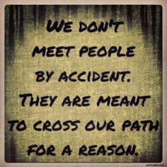 quote: we don't meet people by accident. they are meant to cross our path for a reason.