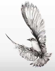 Bird,#art #bird #drawing