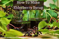 Elderberry Syrup & Elderberry Oxymel