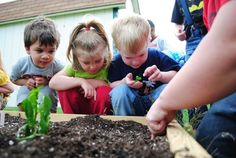 How to Teach Sustainability to Children ~ Sustainable-Sphere