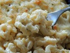 Pepper Jack Macaroni & Cheese Mmmmm this looks so good!