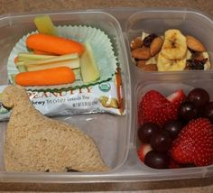 Peanut Butter Dino Sandwich, Annie's Peanutty Granola Bar, Carrot and Celery slices, trail mix, and fresh grapes and strawberries. Cut everything up and used a sandwich cutter. The fruit is always the favorite for our little one.