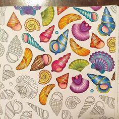 #lostocean Instagram tagged photos - Inspirational Coloring Pages #inspiração #coloringbooks #livrosdecolorir #jardimsecreto #secretgarden #florestaencantada #enchantedforest #reinoanimal #animalkingdom #adultcoloring #johannabasford #lostocean #oceanoperdido